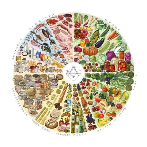 Плакат «Тарелка здорового питания» | Зожник