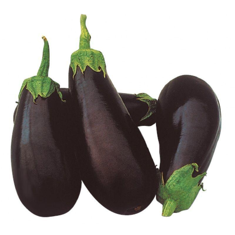 Баклажан Классик F1 семена баклажана (Clause / Клос) Классик_F1_семена_овощей_оптом.jpg