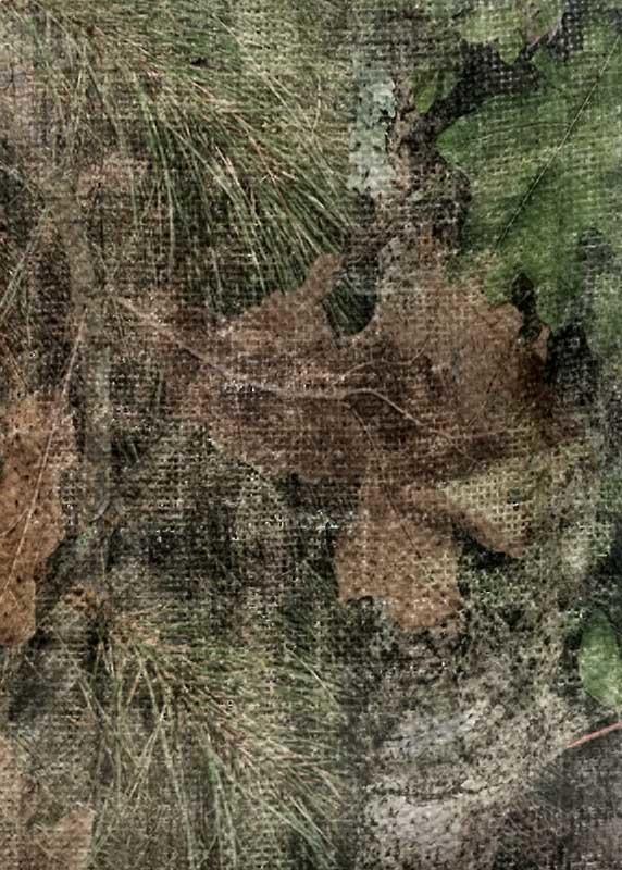 Allen Vanish - Mossy Oak Obsession