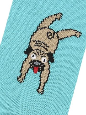 Носки с мопсами
