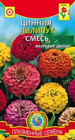Семена Цинния Лилипут смесь, Одн