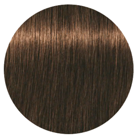 Schwarzkopf Igora Royal New 5-63 (Светлый коричневый шоколадный матовый) - Краска для волос
