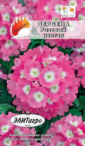 Семена Вербена Розовый нектар, Одн