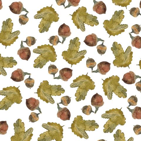 Жёлуди с листьями