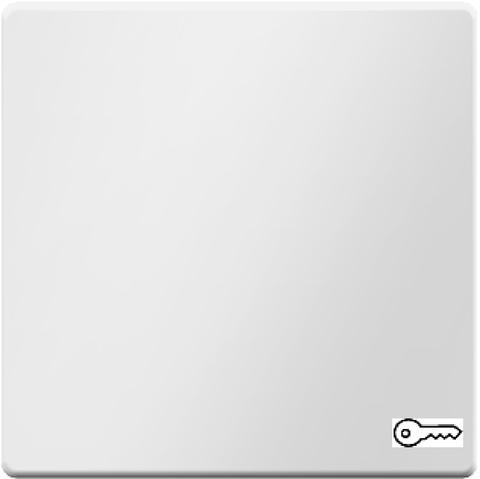 Выключатель одноклавишный, кнопочный (1 замыкатель, 1 размыкатель, раздельные входные клеммы) с оттиском символа «Ключ» 10 А 250 В~. Цвет Полярная белизна. Berker (Беркер). Q.1 / Q.3 / Q.7. 16206069+503203