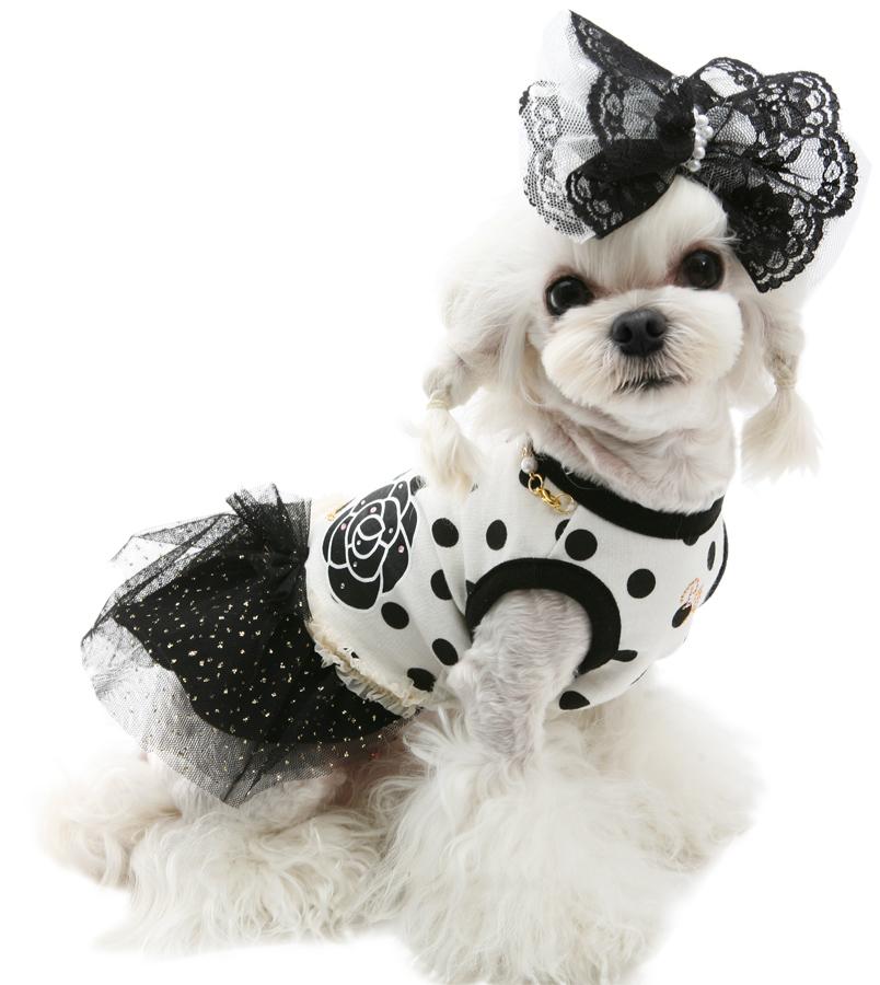 платья для собак