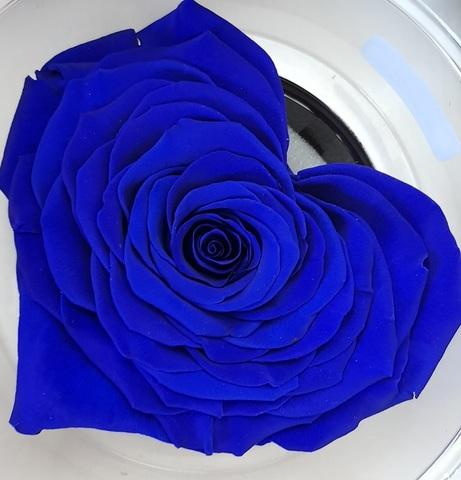 Стабилизированный бутон розы сердце Rose Amor  синий