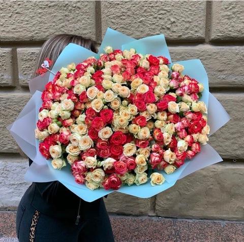 Букет из 81 кустовой розы 60 см #3011