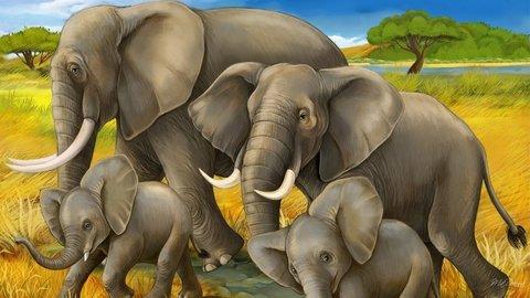 Картина раскраска по номерам 30x40 Семья слонов