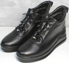 Модные женские ботинки Evromoda 375-1019 SA Black