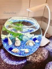 Мини аквариум шар 3л