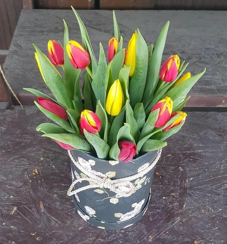Коробка с тюльпанами 4
