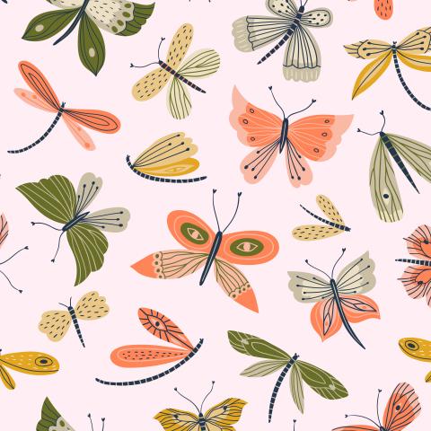 Летние бабочки и стрекозы