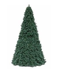 Ель Royal Christmas Giant Trees 370 см