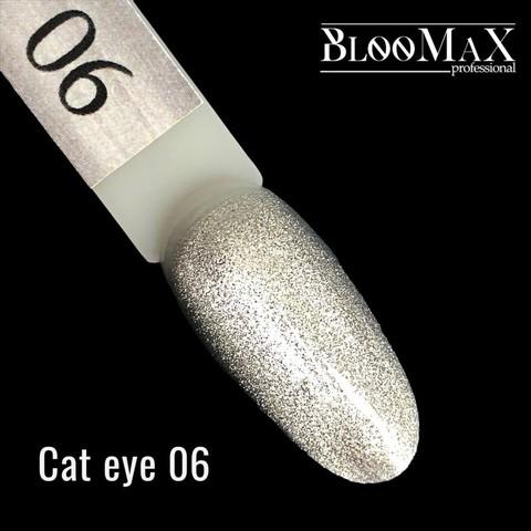 Гель лак Cat eye 06, 12 мл