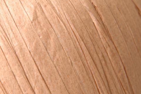 Пряжа Fibra Natura Raffia цвет 116-14