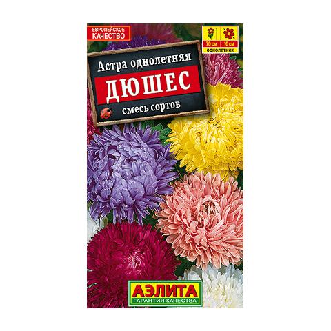 Астра Дюшес, смесь окрасок (Аэлита)
