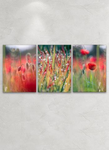 Картина на стекле трёхмодульная Маковое поле
