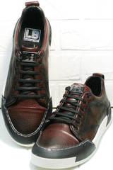 Мужские демисезонные кроссовки кеды мужские осень Luciano Bellini C6401 MC Bordo.