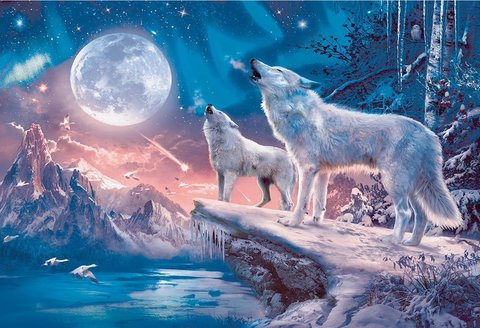 Алмазная Мозаика 40x50 Волки воют на луну