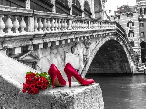 Картина раскраска по номерам 30x40 Красные туфли и цветы на мосту