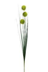 Веточка алиума зеленая 68см Garda Decor 8J-16AS0001