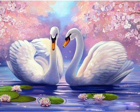 Картина раскраска по номерам 30x40 Лебеди у кувшинок