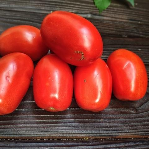 Фотография Помидоры домашние сливовидные (1 кг). купить в магазине Афлора