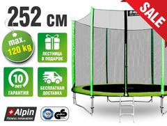 Батут Alpin 252 cм с защитной сеткой и лестницей