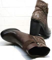 Купить кожаные ботильоны на каблуке Lady West1343 104 Brown.