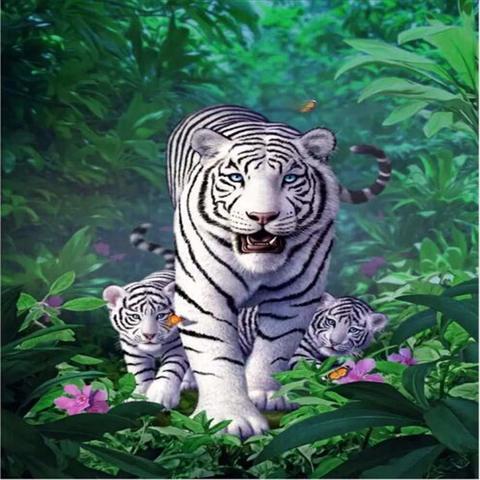 Картина раскраска по номерам 40x50 Белые тигры в наступлении