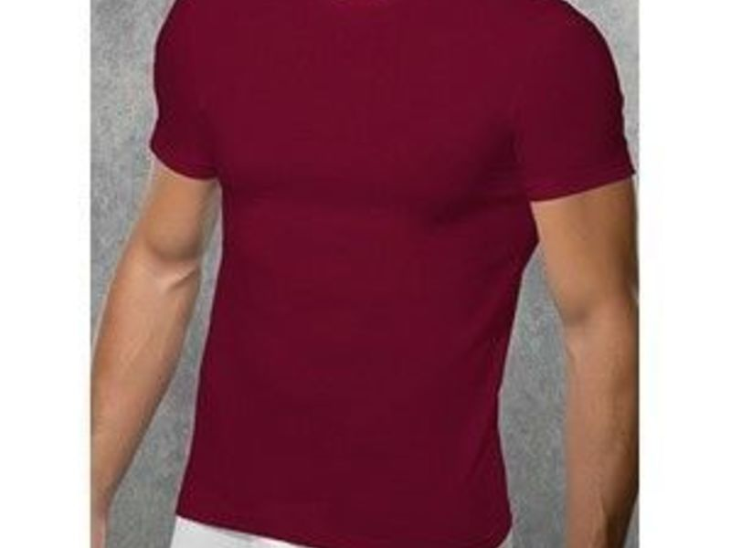 Мужская футболка бордовая Doreanse 2550 Vinous