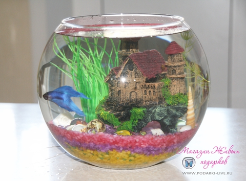 Мини аквариум шар 5 л с замком