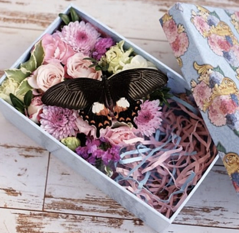 Цветы в шляпной коробке #2996