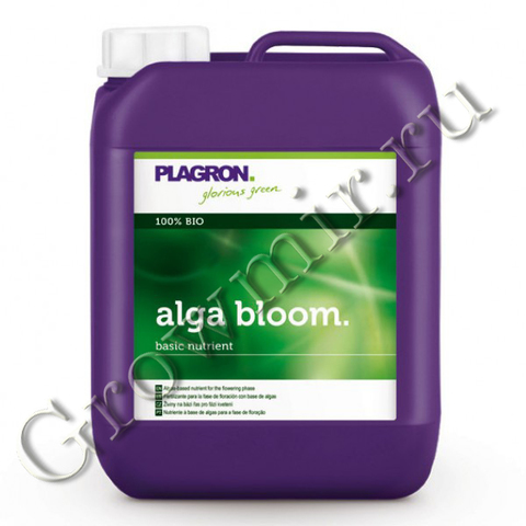 Plagron Alga Bloom 20 L