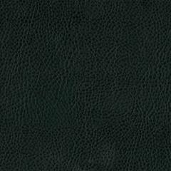 Искусственная кожа Texas green (Техас грин)