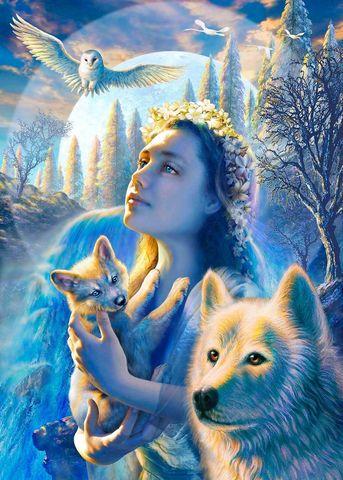 Картина раскраска по номерам 30x40 Девушка с волченком и волк