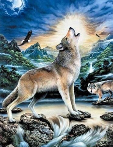 Картина раскраска по номерам 30x40 Ночной животный мир