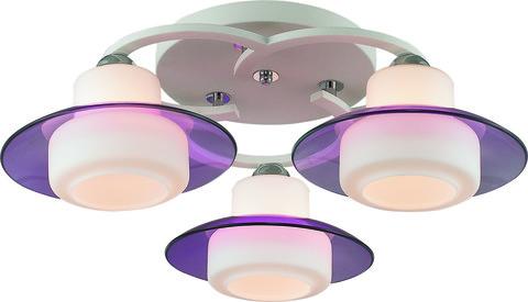 INL-9292C-03 White & Violet