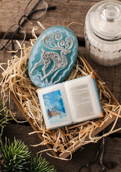 Пластиковая форма для изготовления мыла Книга