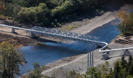 Расчет ущерба водным биоресурсам и компенсационные мероприятия (РБО). Прокладка канализационного коллектора через водные объекты и их водоохранные зоны