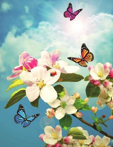 Алмазная Мозаика 30x40 Бабочки в небе (арт. AR8759)