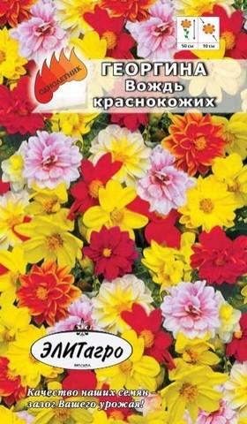 Семена Георгина Вождь краснокожих смесь, Одн