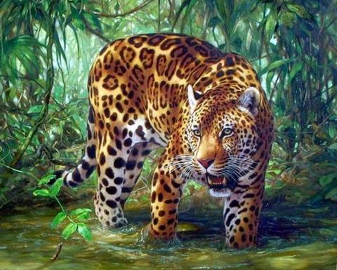 Картина раскраска по номерам 30x40 Тигрица в воде
