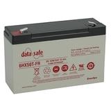 Аккумулятор EnerSys DataSafe 6HX50 ( 6V 11Ah / 6В 11Ач ) - фотография