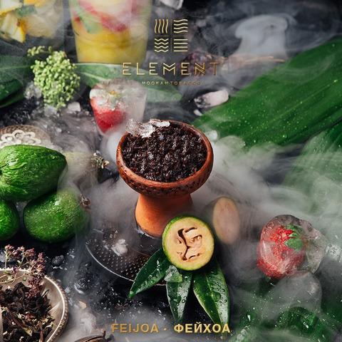 Табак Element Kashmir Feijoa (Земля) 100 г