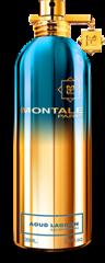 Montale Aoud Lagoon