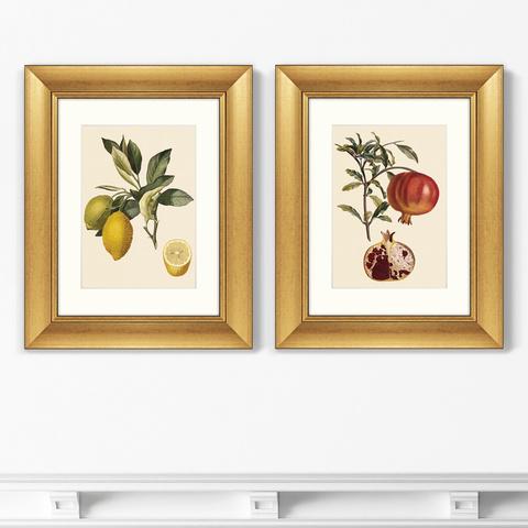 Уолтер Гуд Фитч - Диптих Juicy fruit lithography №10, 1870г. (из 2-х картин)
