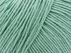 ETROFIL AMIGURUMI (60% орг.хлопок,40% акрил,50гр/145м) 74027 (Мятный шейк)