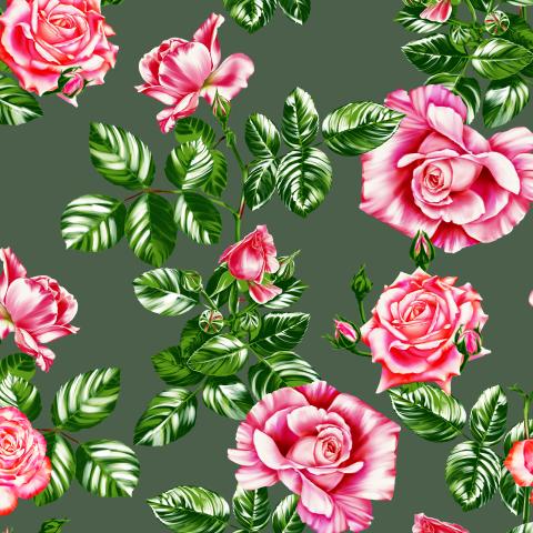 розы_02